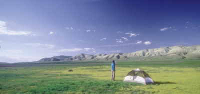 Camping amid goldfields on the Elkhorn Plain in the southeast corner of the Carrizo Plain National Monument.